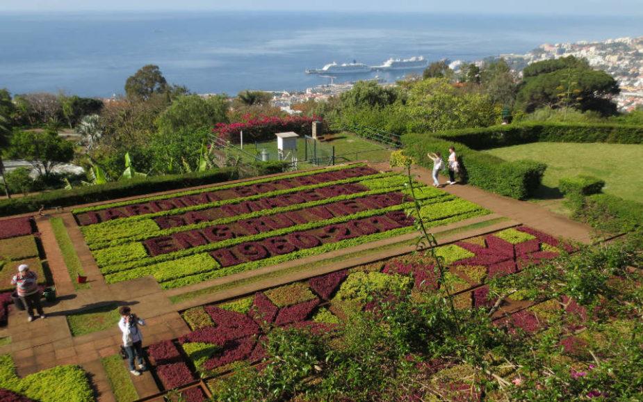 Melhor ano de sempre no Jardim Botânico tem SMIITY